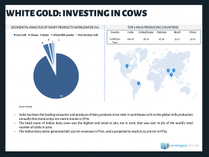 White Gold: Investing in Cows